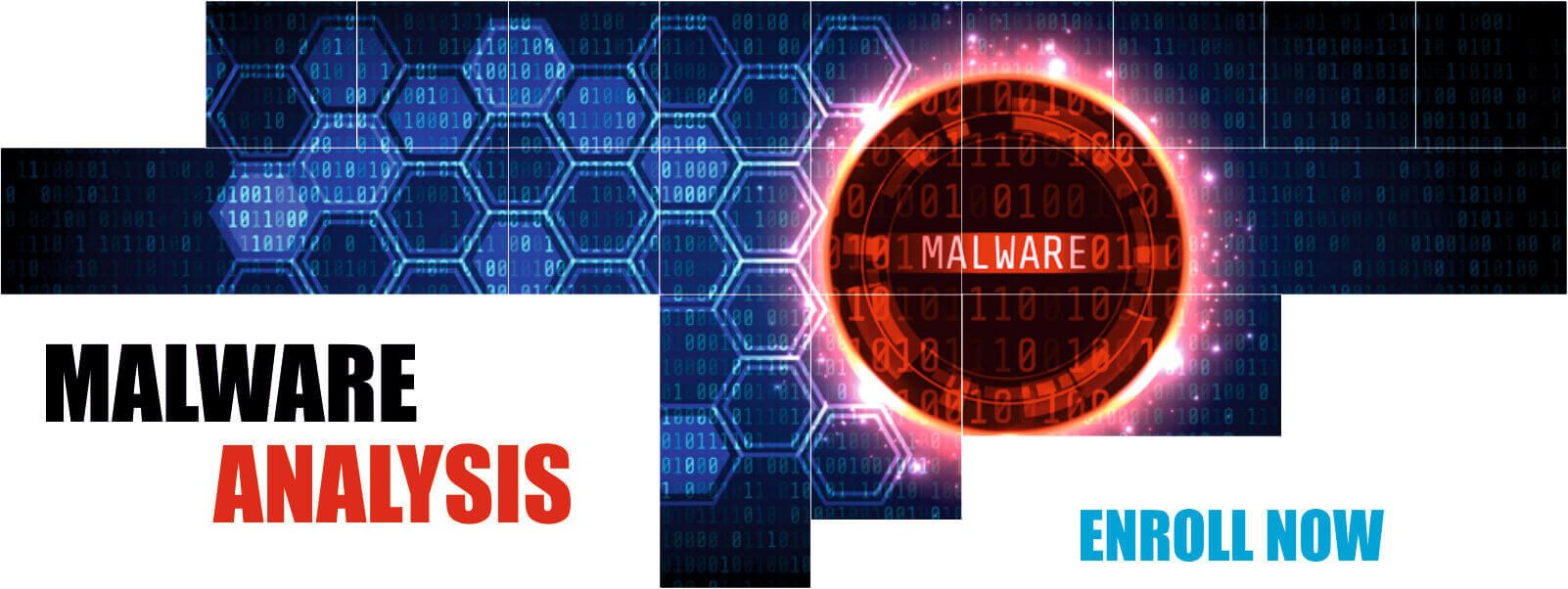 Malware Analysis course in Delhi