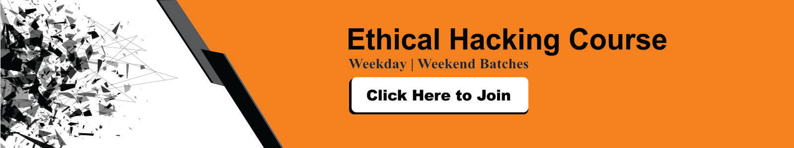 Ethical Hacking courses in Delhi